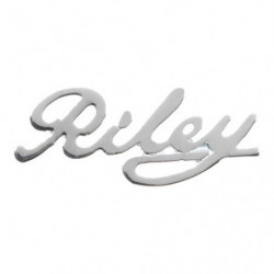 "badge ""riley""script for riley elf"