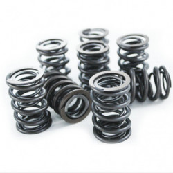 valve springs rising rate up to 515 thou lift fits all